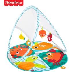 Fisher Price FXC15 Renkli Dostlar T.Bilir Jimnastik Merkezi